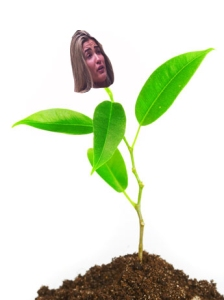plantaline